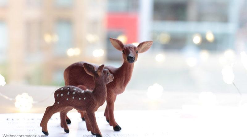bambi and deer