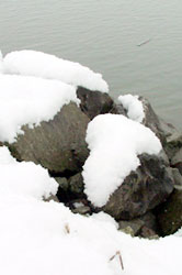 rocks by the Fraser river in winter