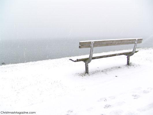 winter in Stanley Park, Vancouver, Canada
