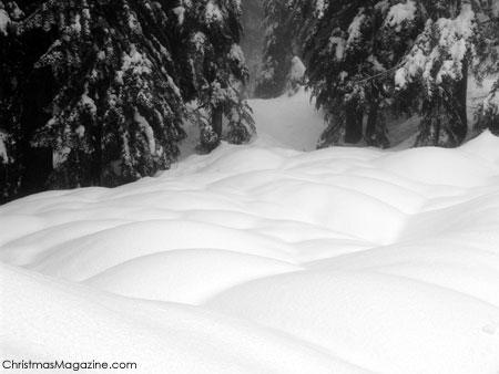 Seymour mountain, British Columbia
